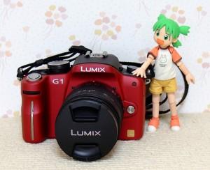 LUMIX DMC-G1W-R
